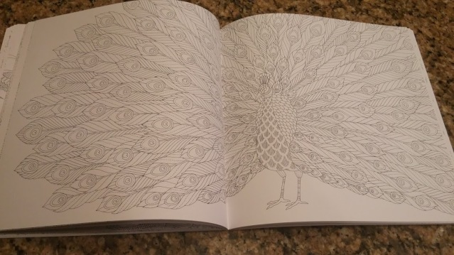 Peacock 2 page