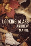 Book Review: Looking Glass by Andrew Mayne