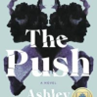 Thursday Thriller Audio: The Push by Ashley Audrain